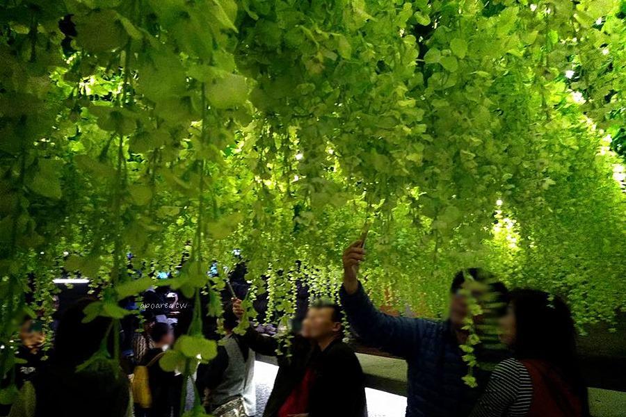 20180220085507 84 - 綠川水岸|藤蔓漸層花海 川流倒影 螢火蟲光景藝術 網美打卡盛地 台中市區景點