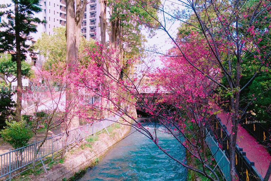20180225113314 36 - 賞櫻免塞車 市區公園還有小橋流水也很美