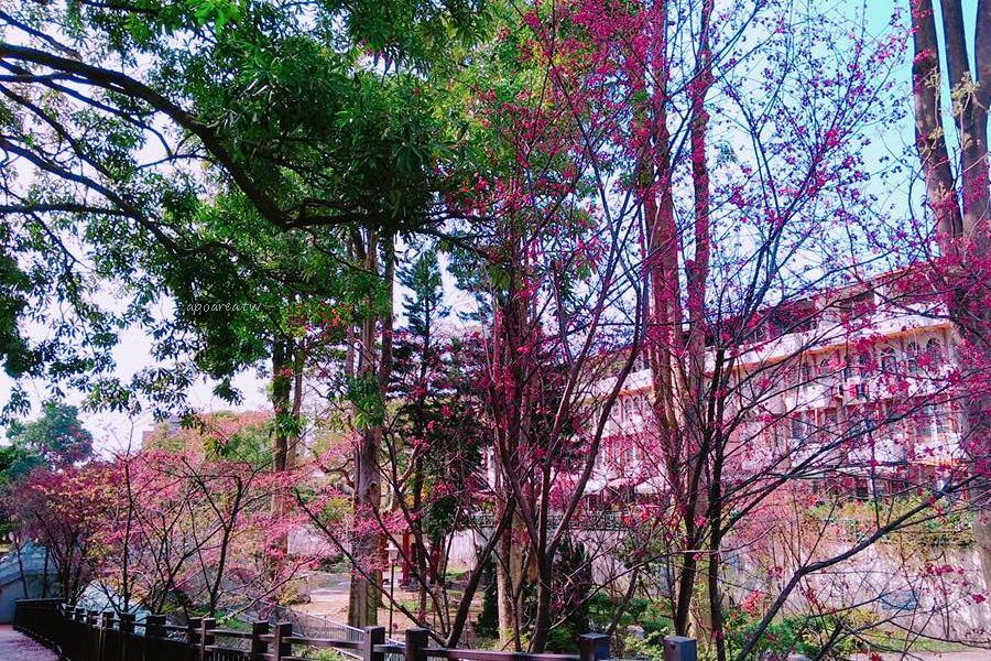 20180225115600 17 - 賞櫻免塞車 市區公園還有小橋流水也很美