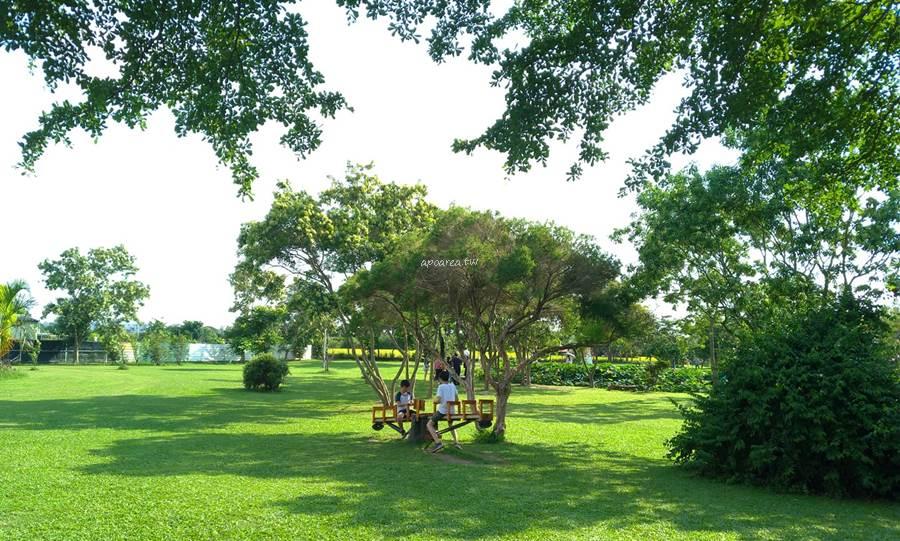 20200707062157 65 - 台中市區欣賞盛開荷花池,大片綠地小橋魚池,大樹盪鞦韆、翹翹板,停車方便,台中親子免費景點