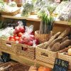 台中多間蔬果宅配到家。免出門,線上訂購新鮮蔬果宅配到府,持續更新